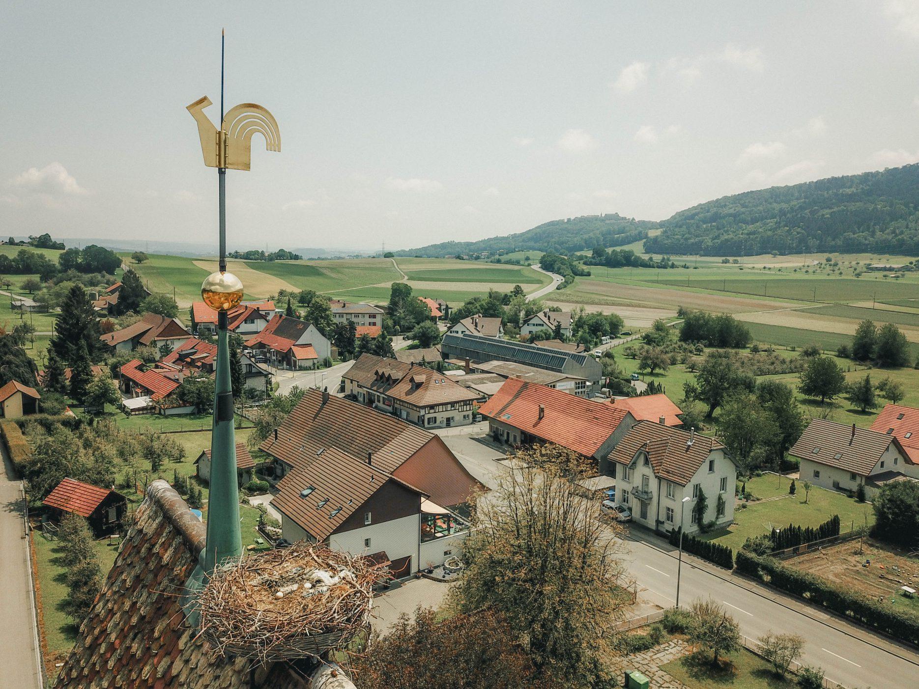 schöfflisdorf storchennest