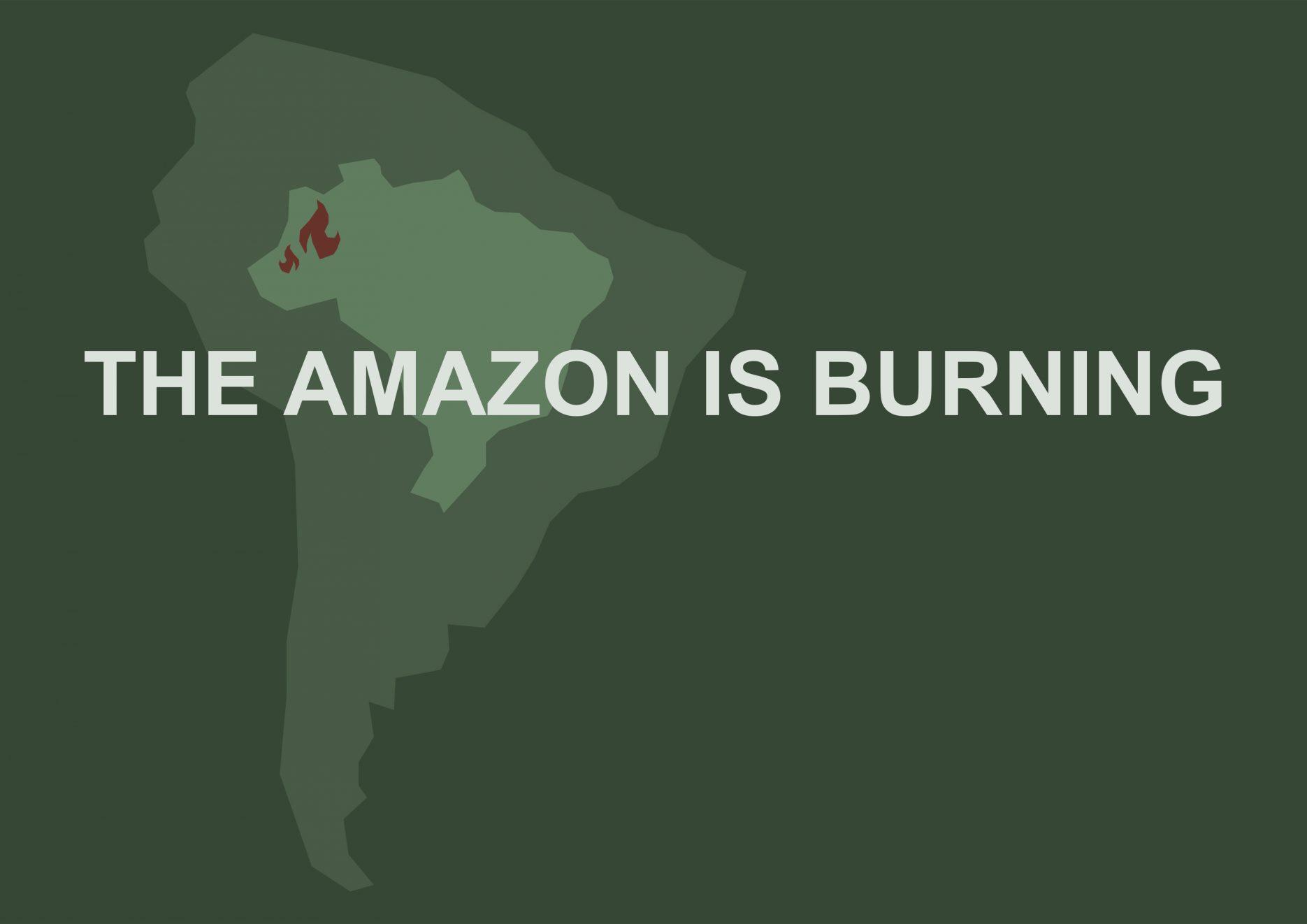 infografik amazonas